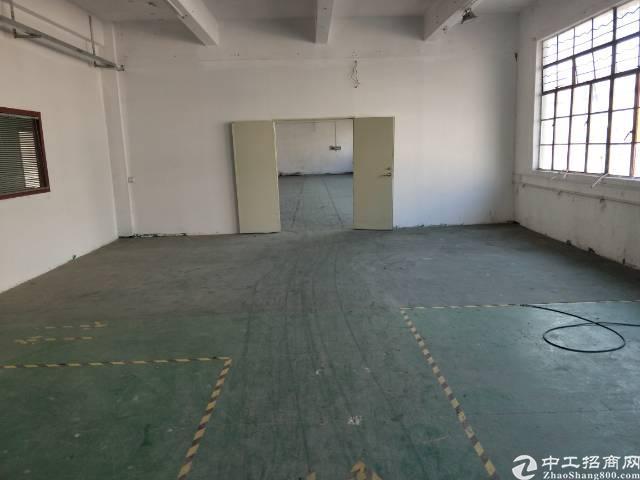福永新田新出独院三层3200平米经典独院厂房-图2