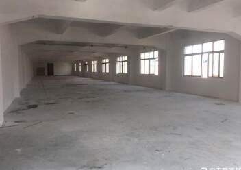 福永凤凰原房东独门独院精装修厂房500平招租图片2