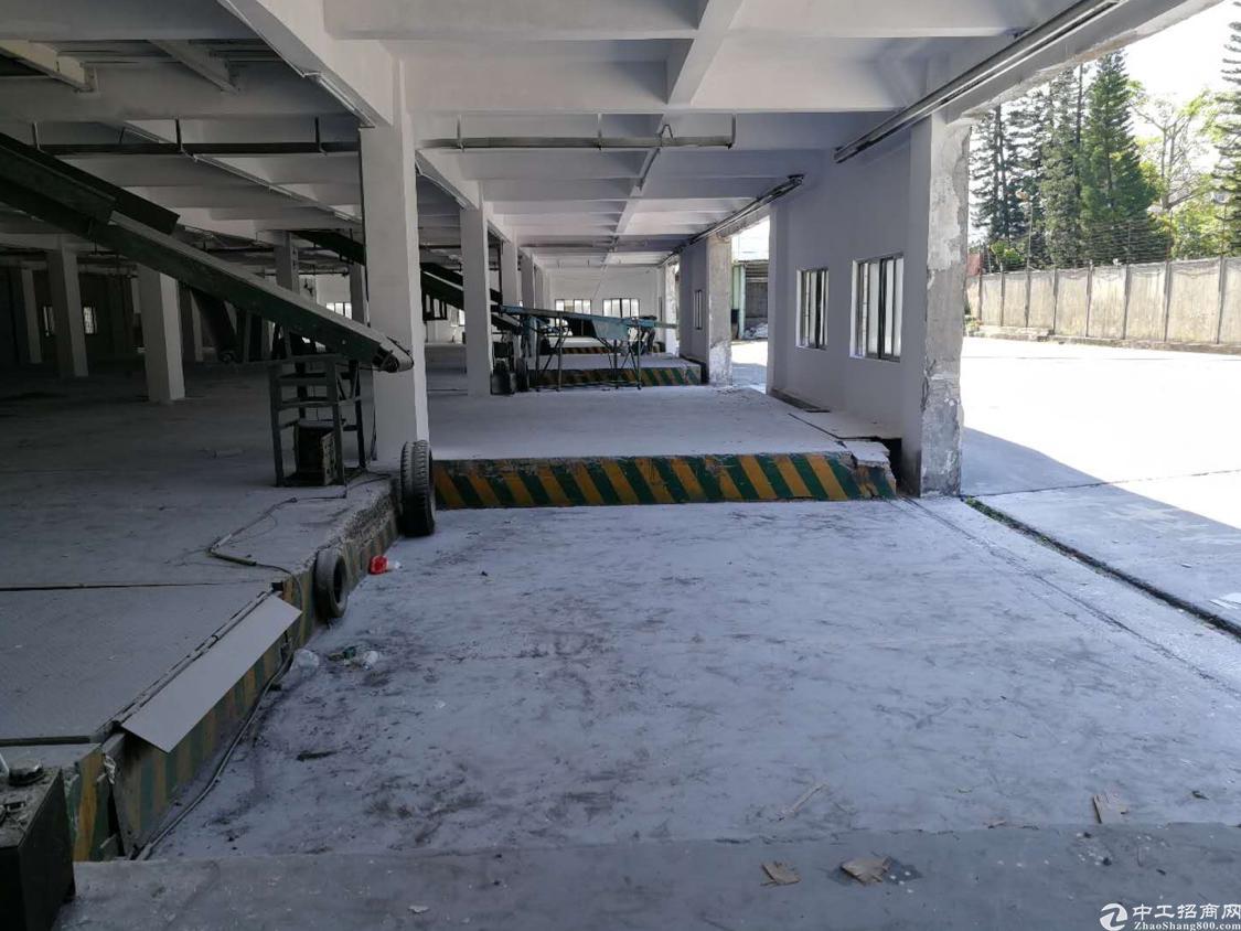平湖独院厂房1万平米出租