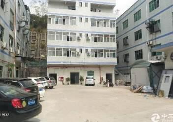龙岗嶂背标准厂房一楼1450平出租图片2