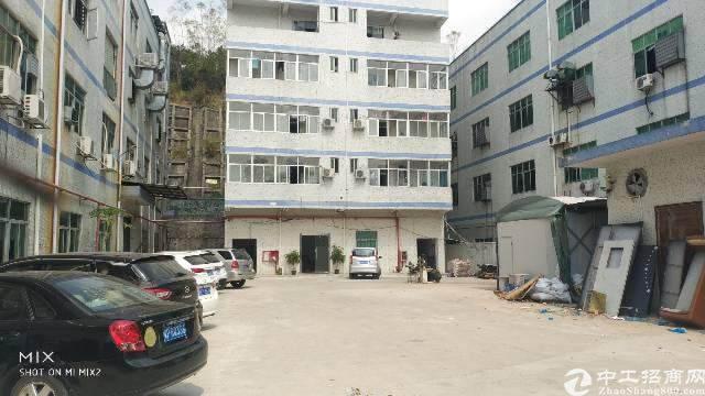 龙岗嶂背标准厂房一楼1450平出租