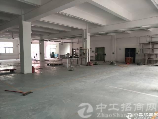 厚街镇下汴村现有原房东独院厂房6200平米低价招租