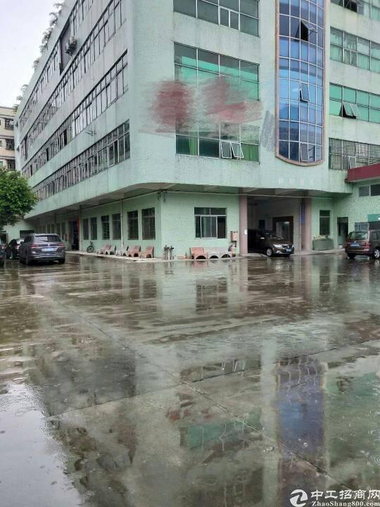 最新东城租客分租厂房