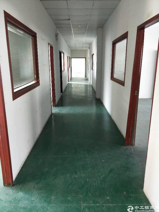 福永新田新出独院三层3200平米经典独院厂房-图5