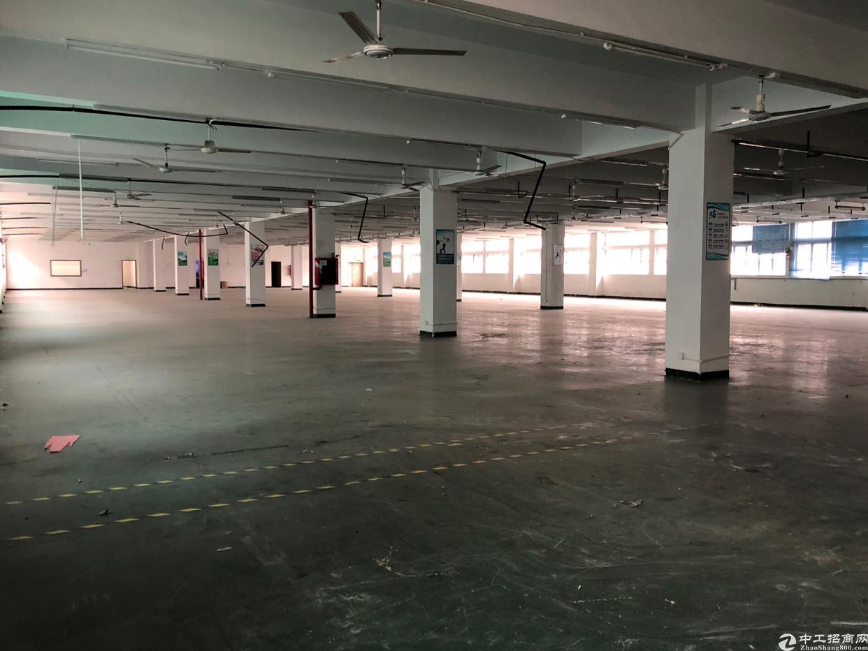 西丽牛成原房东楼上1200平厂房出租