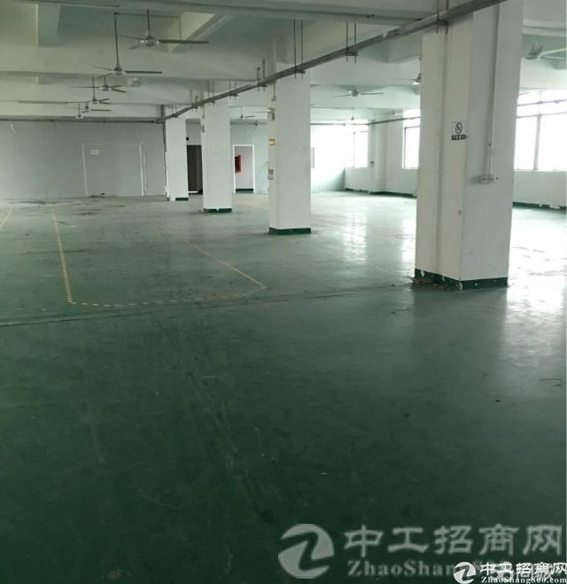 厚街镇宝屯村现有成熟园区二楼原房东带精装厂房600平米招租