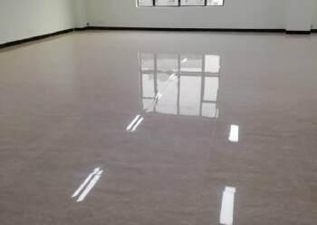 宝安中心区精装小户型113平带私人花园火热招租图片3