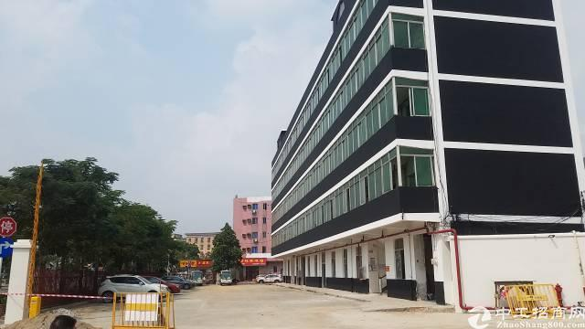松岗燕川新出独院1-3层5200平米、大小可分租-图2