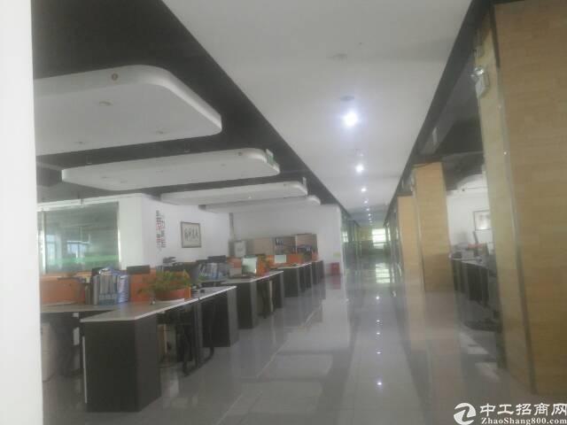 大浪商业中心对面新出楼上整层面积豪华装修2500平方招租