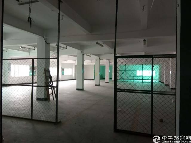 惠州小金口工业区内独院楼上600平标准厂房出租