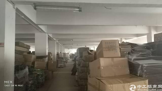 龙岗最便宜厂房楼上1200租15-图2