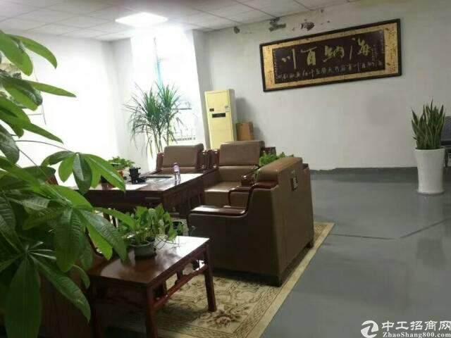 龙岗南联280平精装修办公室出租图片1