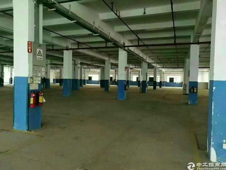宝安松岗地铁口高新产业园红本厂房出租带消防喷淋1500平起租