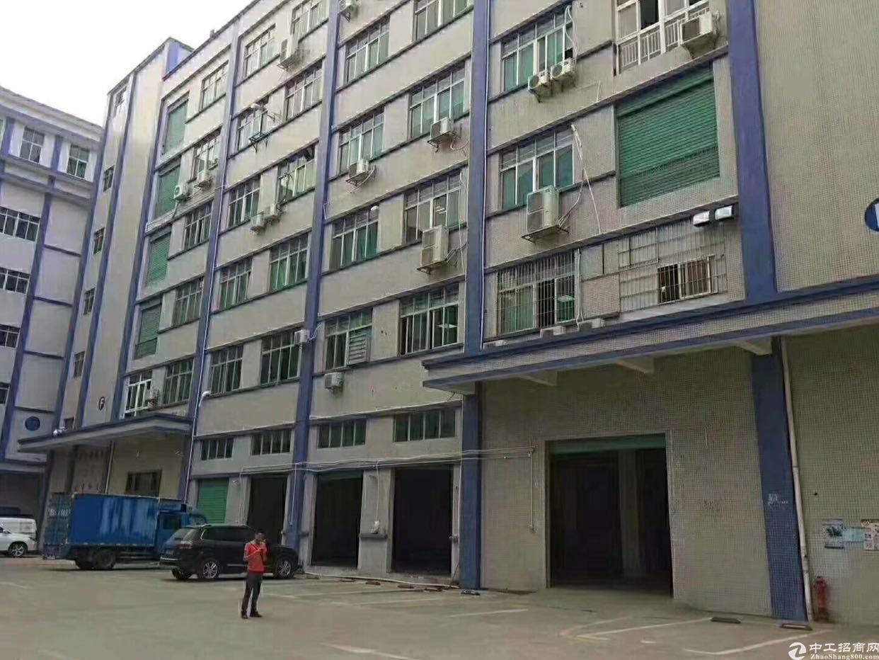 坂田上雪科技园工业区新出1400平方带装修原房东厂房
