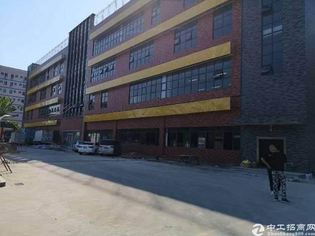 出租龙华大浪 原房东工业园图片3
