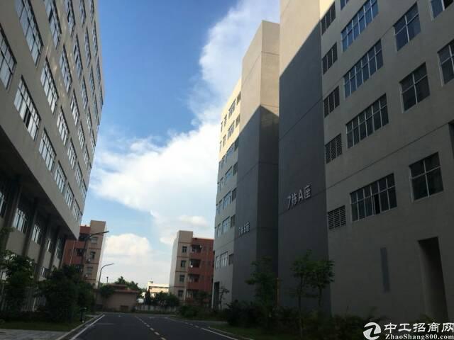大浪商业中心附近新出一楼900平方大浪华繁路上,近商业中心,-图3