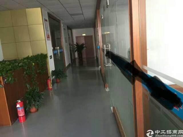 龙岗吉祥地铁口350平精装修办公室出租图片3