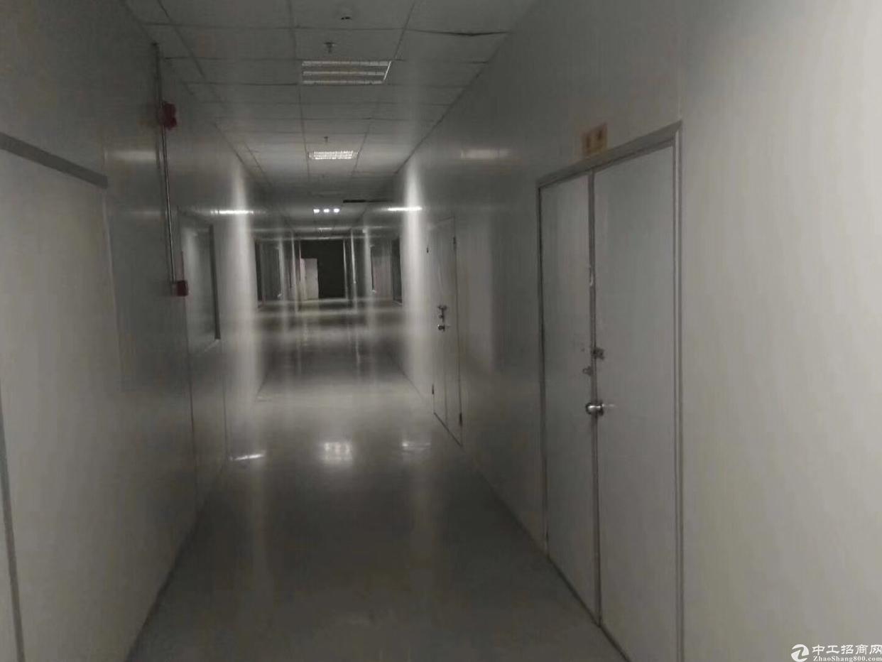 松岗大田洋高新园区原房东厂房,楼上整层2800平,2部3吨货-图5