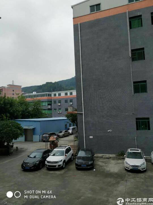 西乡九围富源教育城附近750平方租金26元