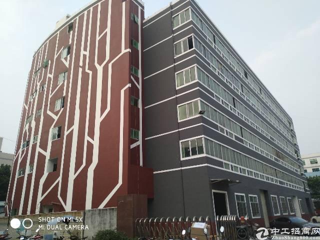 出租沙井镇西环路天虹商场500平方厂房