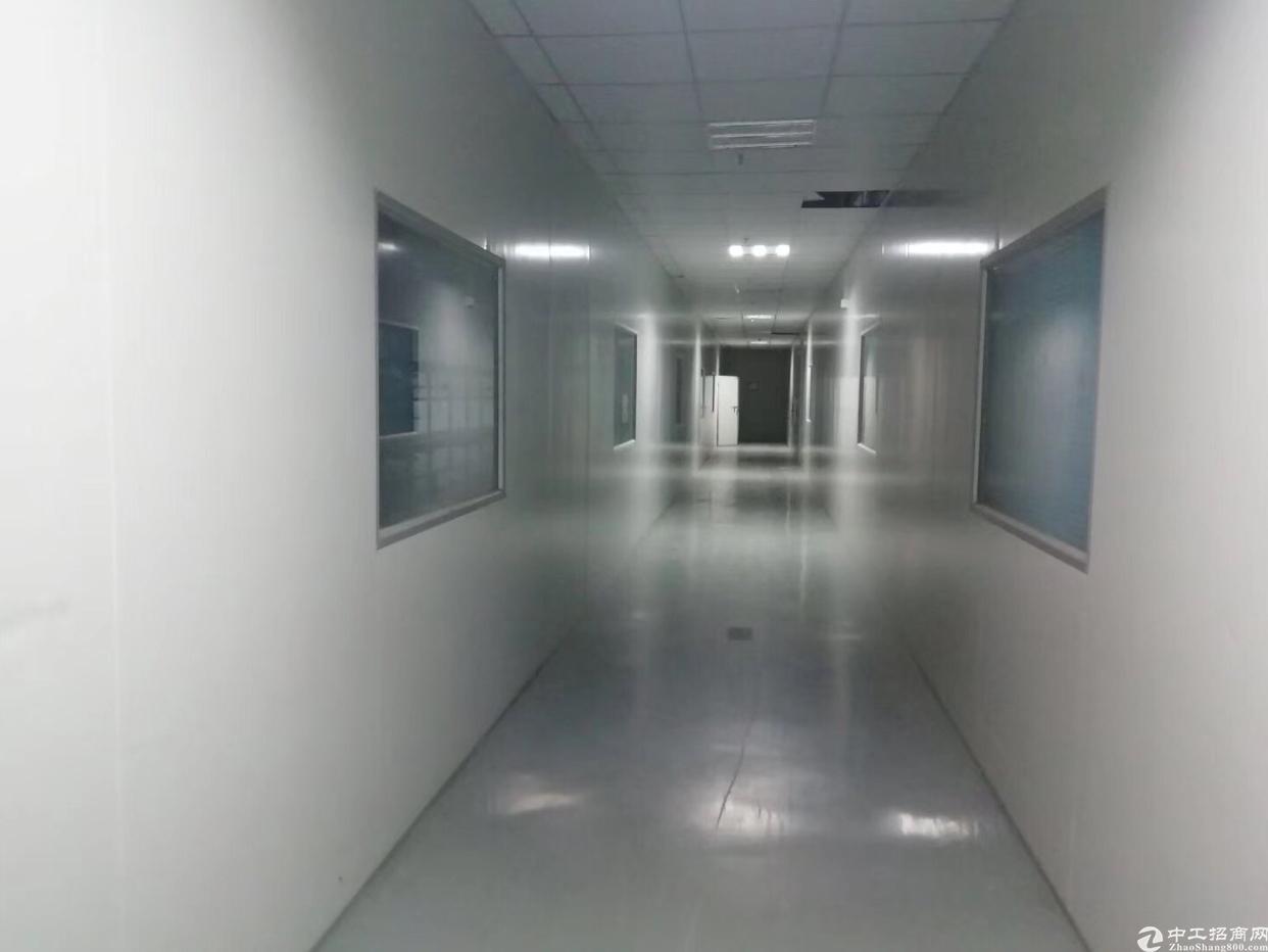松岗大田洋高新园区原房东厂房,楼上整层2800平,2部3吨货-图3