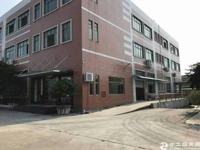 石龙镇国有证厂房12000平方售2500万