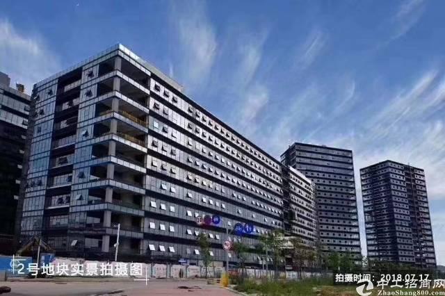 西乡碧海湾双地铁口附近50-350平米精装修出租