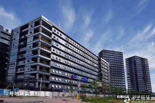 西乡碧海湾双地铁口附近50-350平米精装修出租图片1
