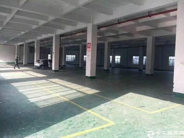 惠州仲恺高新区刚出独门独院两层厂房招租形象不用说空的超大