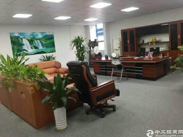 龙岗南联280平精装修办公室出租图片2