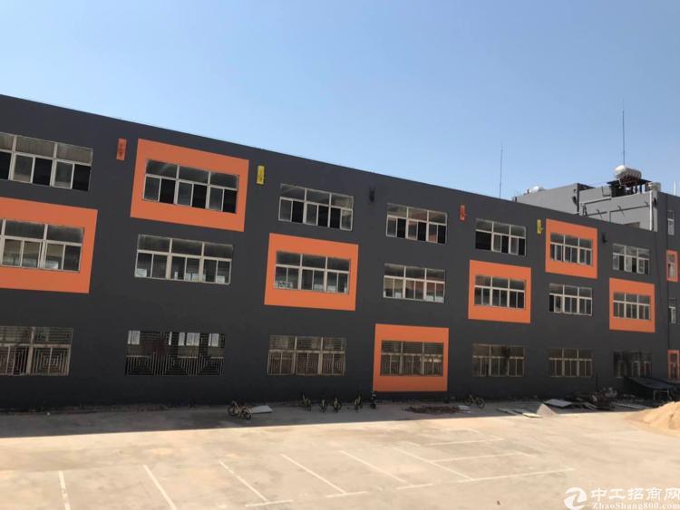 龙华清湖地铁口物业30000平创业园50平起租