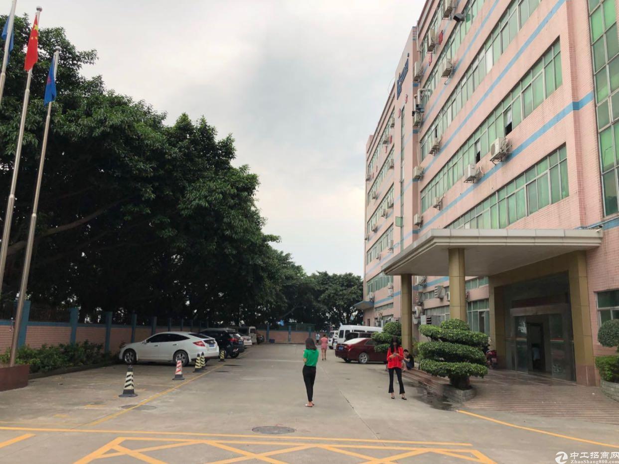 福永107国道旁新出1200平带装修无转让费原房东厂房出租