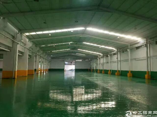石碣新出12米高大型工业园区。