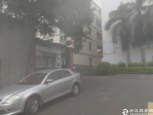 平湖新出带红本,已过消防工业区一楼400平米厂房招租-图2