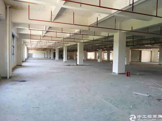 出租龙华大浪 原房东工业园图片2