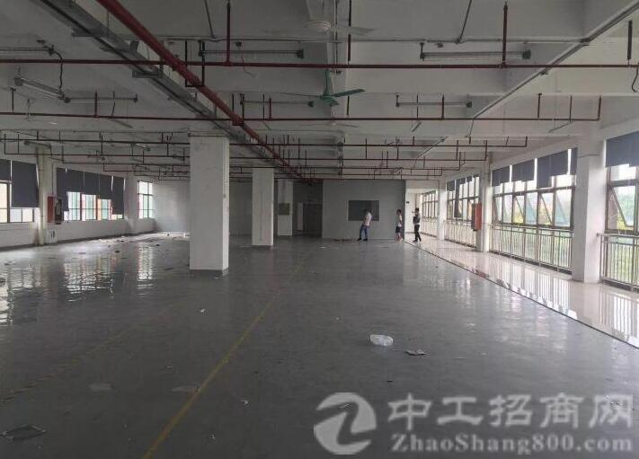 沙井步涌新出楼上整层3400平方精装修厂房招租