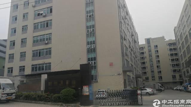 凤岗镇独院一楼2200平方,高6米-图5