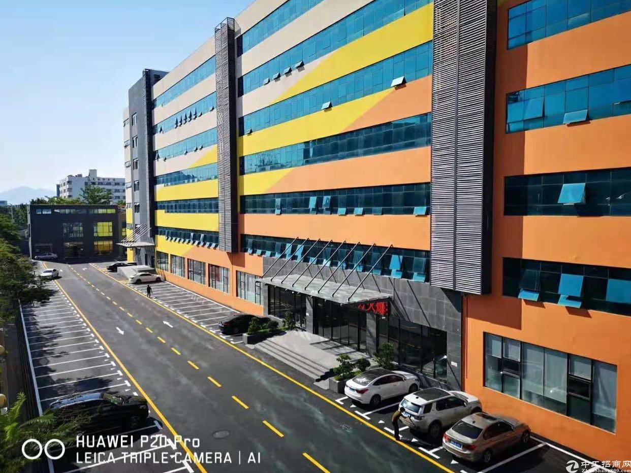 西丽白芒关口楼上一楼3600平厂房招租