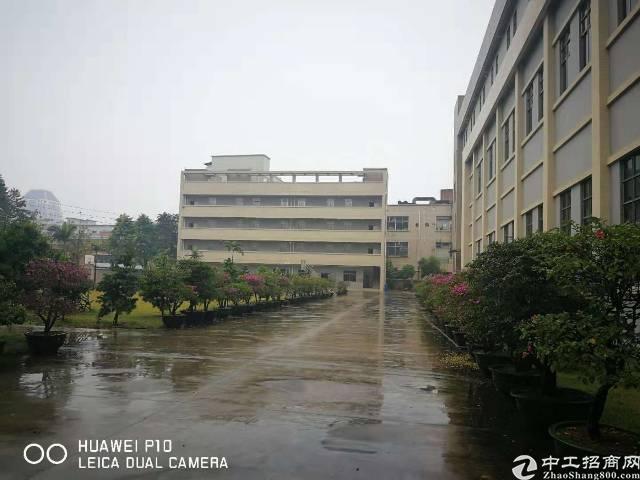 长安原房东新建厂房一楼2000平楼上4000平