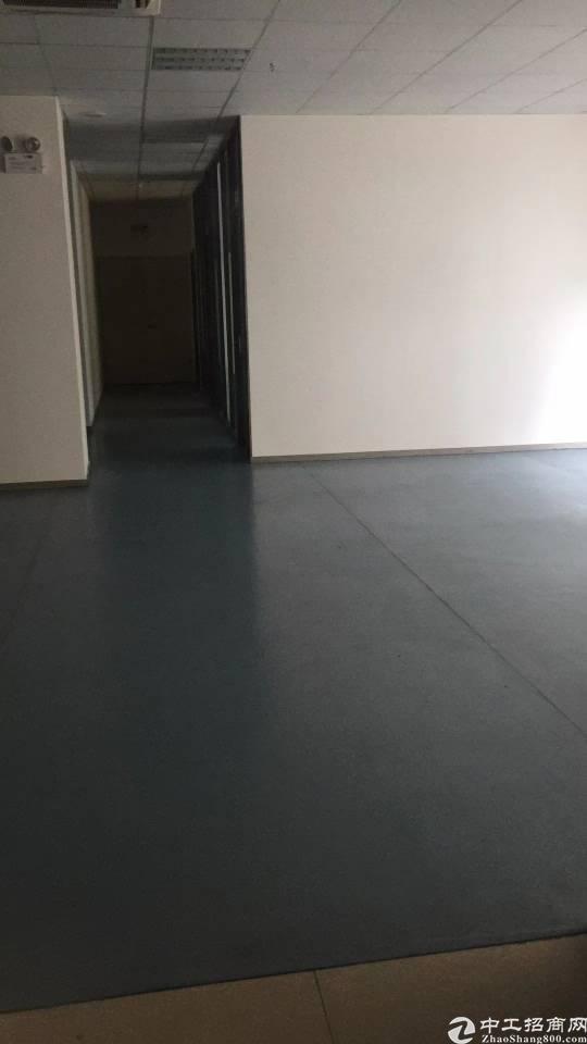凤岗镇:楼上5200平无尘车间厂房业主直租。 配电:-图4