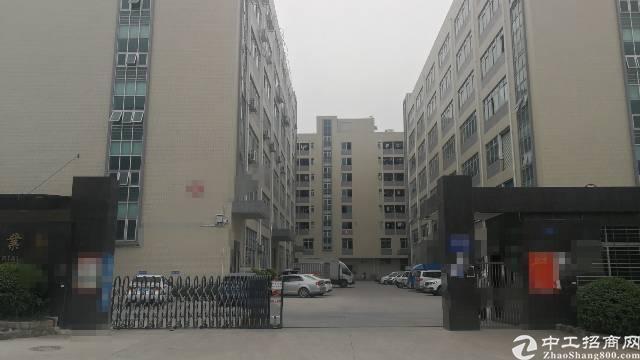 凤岗镇独院一楼2200平方,高6米-图6