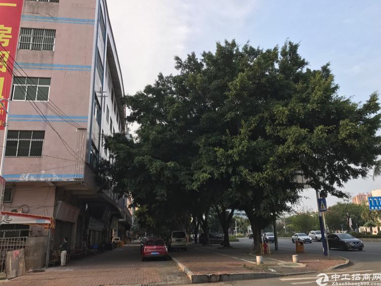 石龙新城区优质国有证厂房6500平方米售3000万!