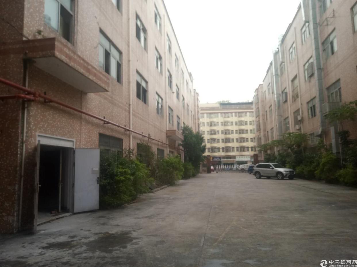 坪地标准独院厂房8000平米,业主直租