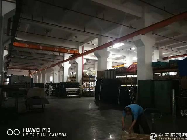 锦厦河南工业区一楼厂房招租 2000平方高七米五带行车