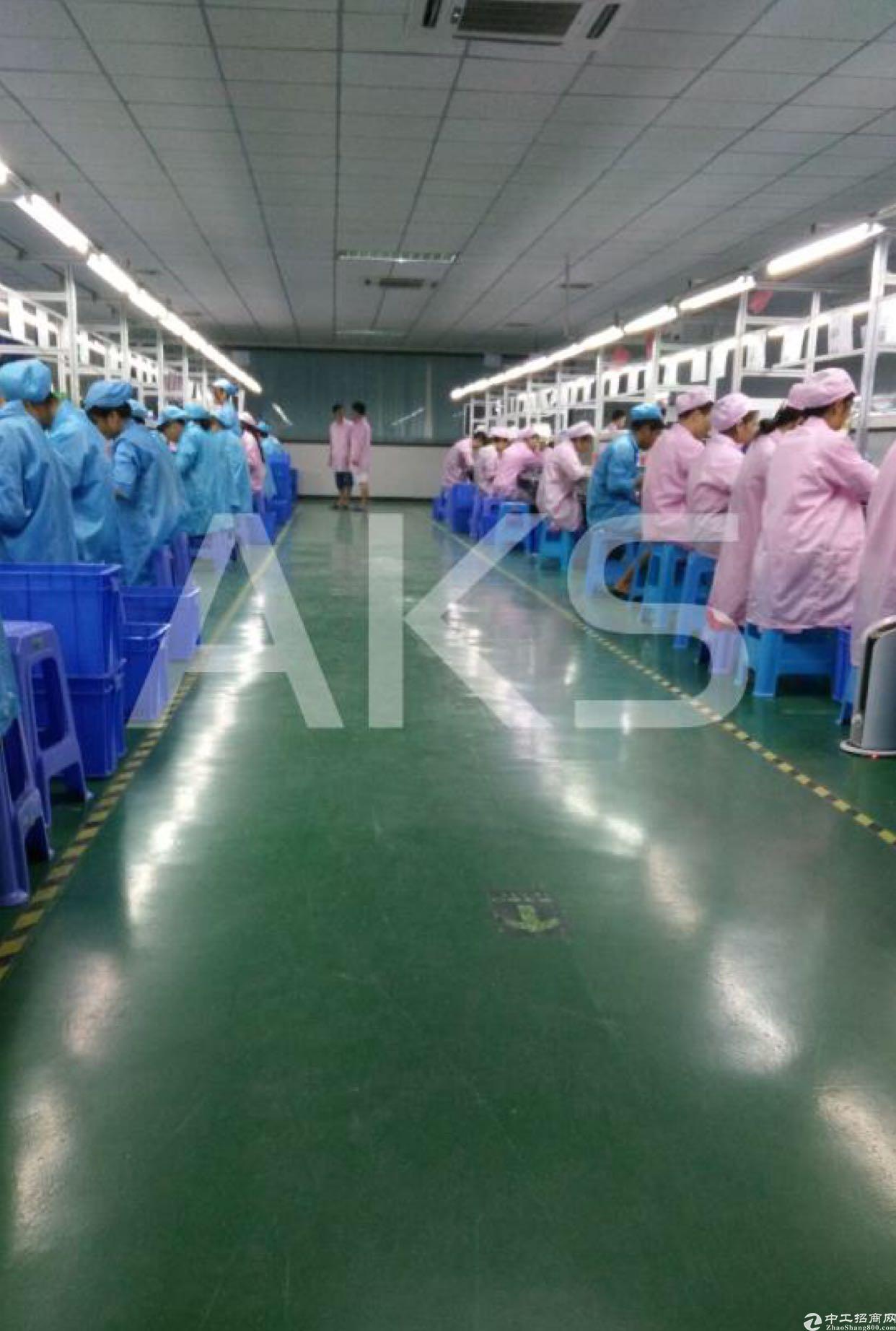 福永和平新出1500米带装修厂房无需转让费