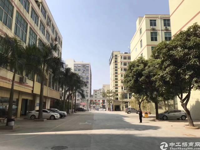 公明李松蓢大型工业园一楼1500平方带牛角出租!-图3