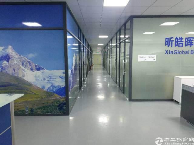龙岗中心城电商产业园直租面积300平图片1