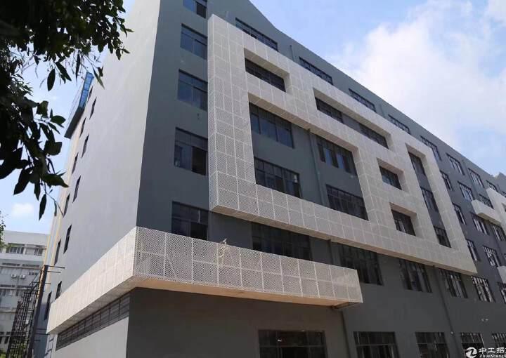 南山西丽阳光工业区独院每层2300平388起租带装修图片6