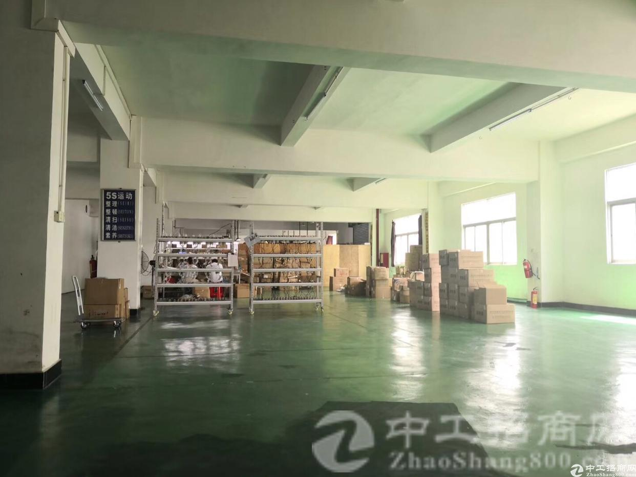 桥头村工业区标准厂房二楼1270平方可直接进驻,面积利用率高