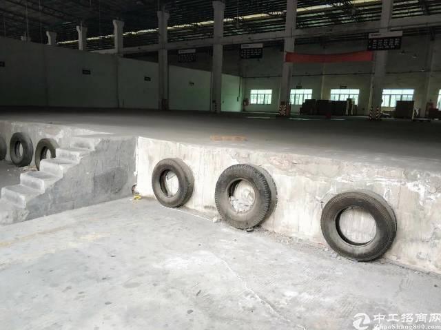 西乡九围新村物流园5000平钢构